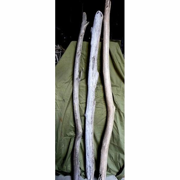 流木:幹 1800(1.5~1.8m)3本セット