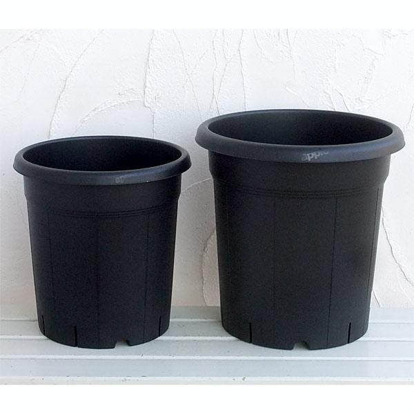 果樹鉢:ブラック 310型(12号)・365型(13号)各5個セット