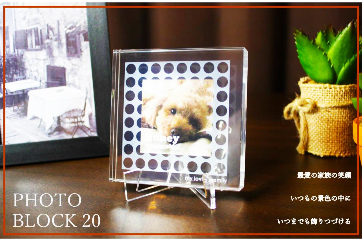 【名入れ オリジナルメッセージ 無料】アクリル製 ペット用 フォトフレーム PhotoBlock20 フォトブロック 【記念品 贈り物 写真立て フォトスタンド プレゼント】