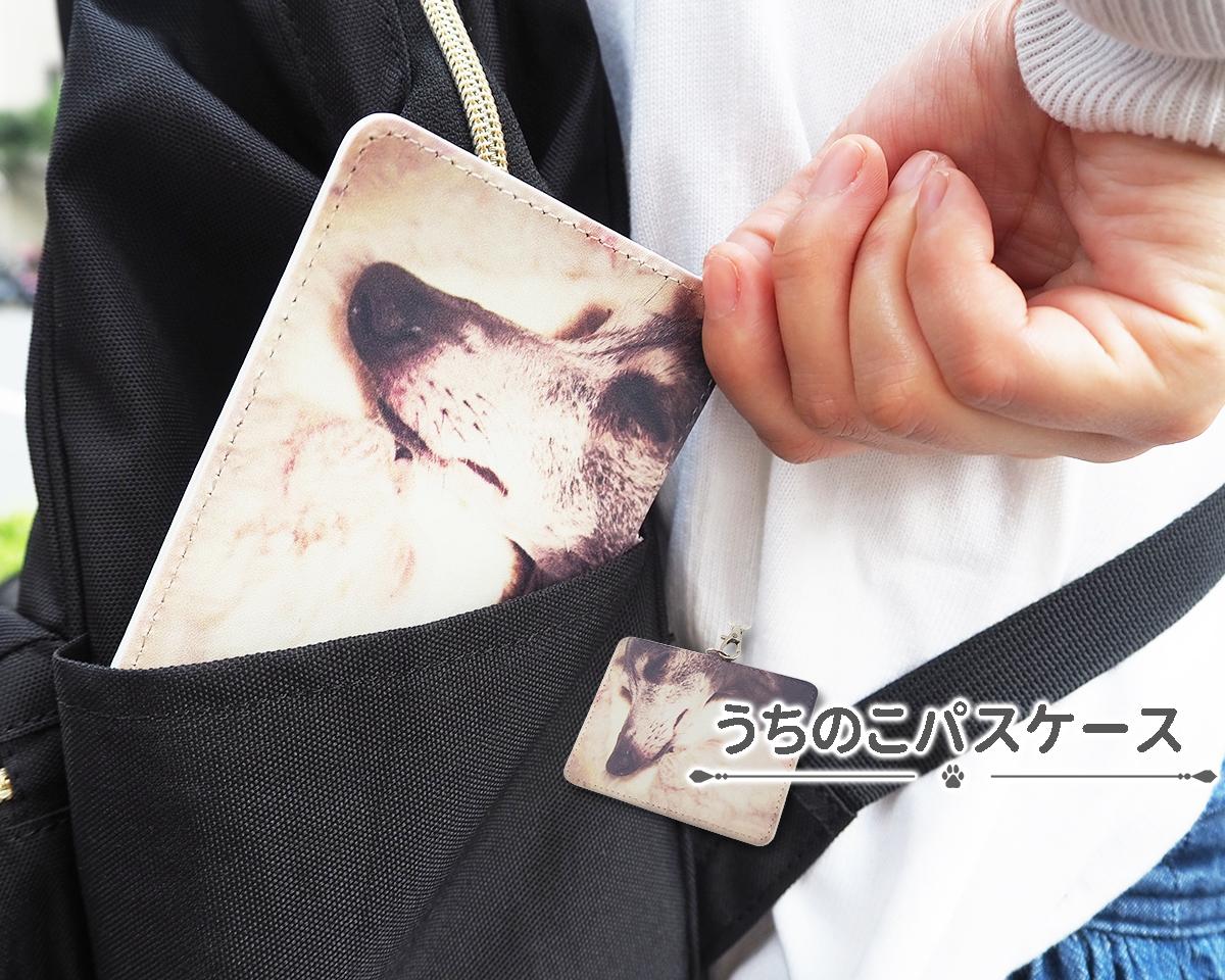 【送料無料】写真を送るだけでオリジナルのパスケースを作製!「うちのこパスケース」オーダーメイド オーダー 定期入れ カード入れ ケース ペット オリジナルグッズ 犬 猫 ギフト プレゼント かわいい 簡単 誕生日 父の日 母の日 贈り物