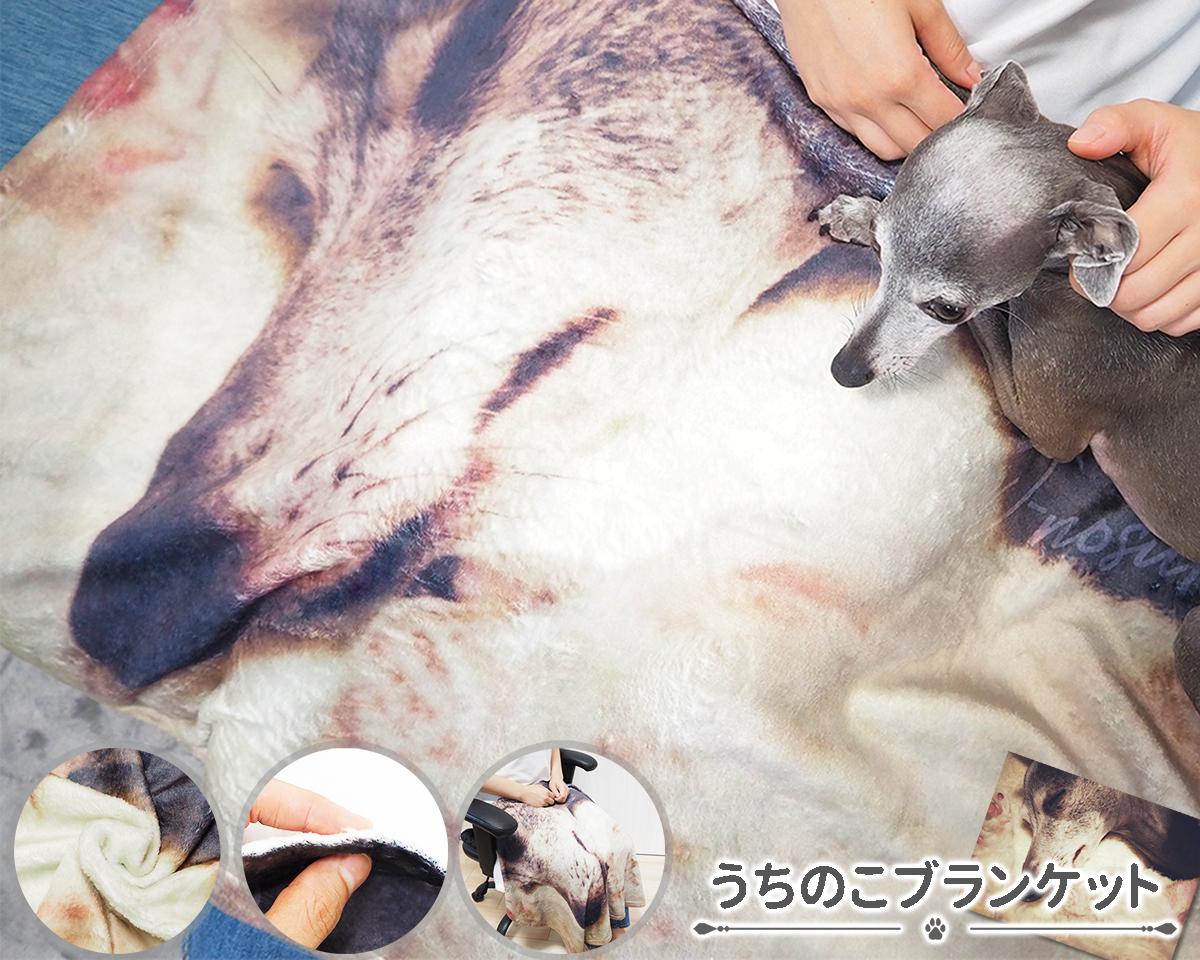 【送料無料】写真を送るだけでオリジナルブランケットを作製!「うちのこブランケット」オーダーメイド オーダー ブランケット ふわふわ 毛布 ひざ掛け ペット オリジナルグッズ 犬 猫 ギフト プレゼント かわいい 簡単 誕生日 父の日 母の日 贈り物