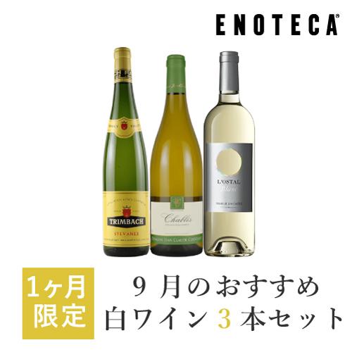 今月はフランスを代表するの3つの銘醸地 ブルゴーニュ アルザス ラングドック ルーションから多彩な味わいの白ワイン3本を厳選 日本最大級の品揃え ワイン 春の新作 ワインセット KK9-2 3 x 750ml 9月のおすすめ白ワイン3本セット
