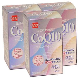 コエンザイムQ10【3本セット】健康フーズ:(サプリメント)CoQ10+ビタミン11種、話題のBCAAの組み合わせでファイアー!【同梱区分J】