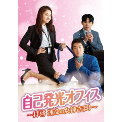 【送料無料】自己発光オフィス~拝啓 運命の女神さま!~ DVD-BOX1 【DVD】