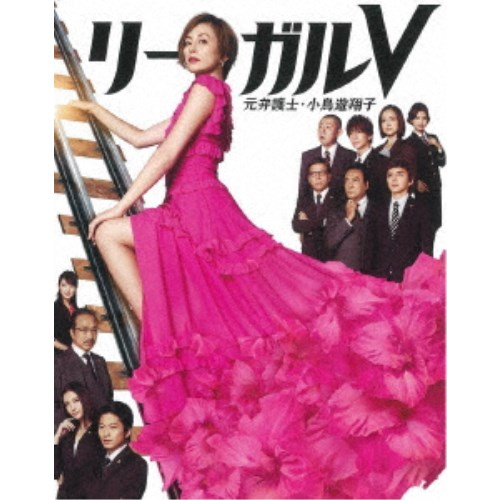 リーガルV~元弁護士・小鳥遊翔子~ DVD BOX 【DVD】