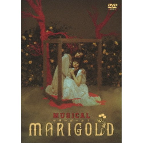 返品送料無料 ミュージカル マリーゴールド 《週末限定タイムセール》 DVD