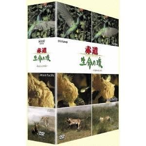 赤道 生命の環 DVD-BOX II 【DVD】