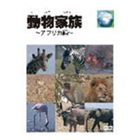 【送料無料】動物家族~アフリカ編~ DVD-BOX 【DVD】