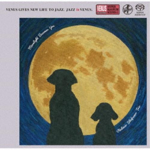 ウラジミール シャフラノフ トリオ 国際ブランド ムーンライト CD 新品未使用正規品 ユー ビカムズ