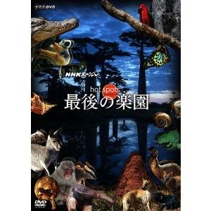 ホットスポット 最後の楽園 DVD-BOX 【DVD】