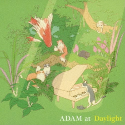 ADAM at/Daylight 【CD】