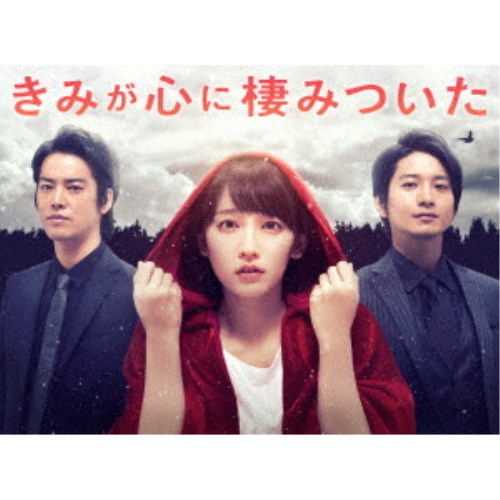 【送料無料】きみが心に棲みついた Blu-ray BOX 【Blu-ray】