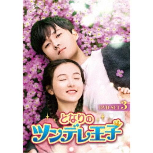 となりのツンデレ王子 DVD-SET3 【DVD】