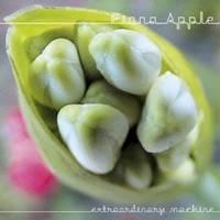 CD-OFFSALE フィオナ ストア アップル ショッピング マシーン エクストラオーディナリー CD