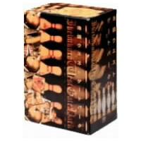 【送料無料】池袋ウエストゲートパーク DVD-BOX 【DVD】