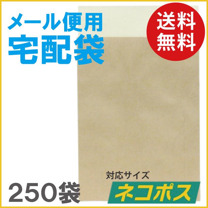 メール便用宅配袋 ネコポス対応 250袋 テープ付き【無地 クラフト 宅急便 紙袋 袋 梱包資材 梱包 封筒】