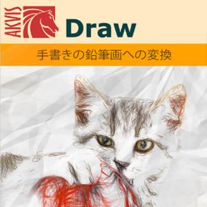【35分でお届け】AKVIS Draw Home 7.0 スタンドアロン【shareEDGEプロジェクト】【ダウンロード版】
