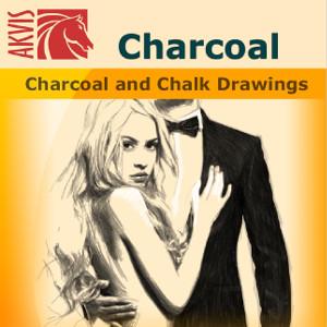 【35分でお届け】AKVIS Charcoal for Mac Home 3.0 スタンドアロン【shareEDGEプロジェクト】【ダウンロード版】
