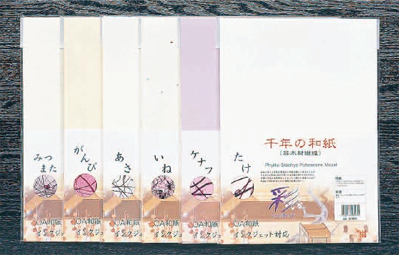 【直送品・代引き不可】【保育園・学校用紙及び器材】プリンター用和紙「彩」ケナフA4・30枚×25袋