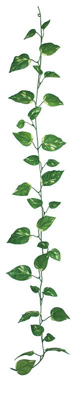【店舗・イベント用品】【グリーン(観葉植物)】レギュラーガーランド・ポトス24本セット