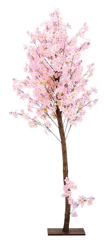 【店舗・イベント用品】【季節別ディスプレイ】【春】【桜】天然木桜スタンド