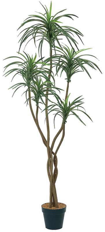 【店舗・イベント用品】【グリーン(観葉植物)】ユッカツリー150cm