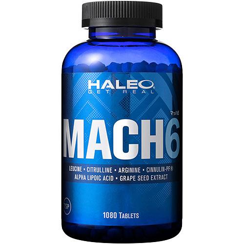 ハレオ HALEO MACH6 マッハ6 1080粒