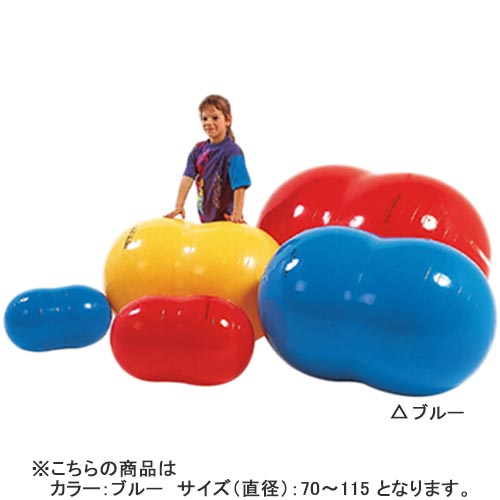 【特殊送料】ダンノ DANNO フィジオロール70 ブルー D5427