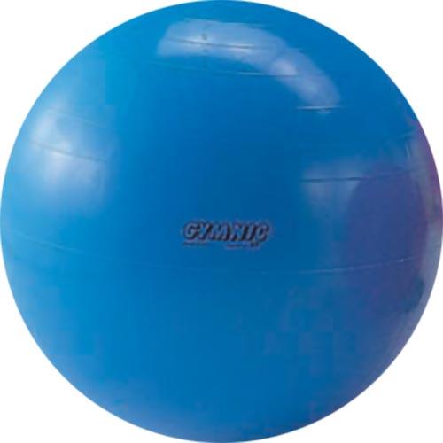 ダンノ DANNO ギムニク カラーボール 95 D5435