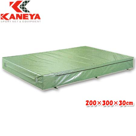 【特殊送料】カネヤ KANEYA エバーマット屋内外兼用 200×300×30cm K-4000