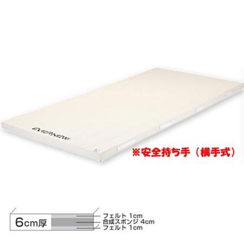 【受注生産品】エバニュー EVERNEW コンビ6号120×300×6 EKM343
