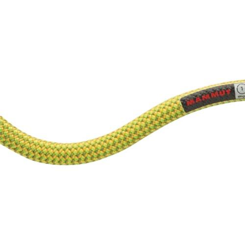 マムート MAMMUT 9.5インフィニティドライ 9.5 Infinity Dry 30m 11136/DryStandard,pappel-limegreen 2010-02641