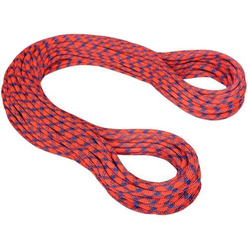 マムート MAMMUT ロープ 9.8 エタニティ プロテクト スタンダード,ネオン オレンジ-バイオレット 40m 2010-02712 51187