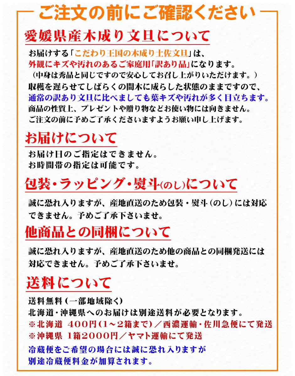 みかん>【愛媛県愛南町産】木成り土佐文旦(とさぶんたん)