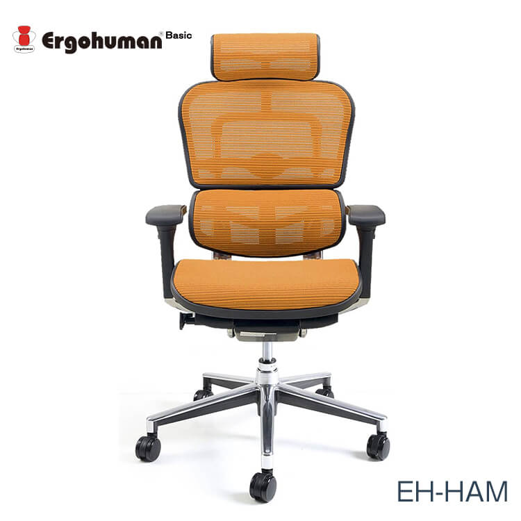 ワンダフルポイント5倍 【送料無料】エルゴヒューマン チェアー EH-HAM Ergohuman 人間工学 多機能 メッシュ ハイタイプ オフィス 高品質 KMD33