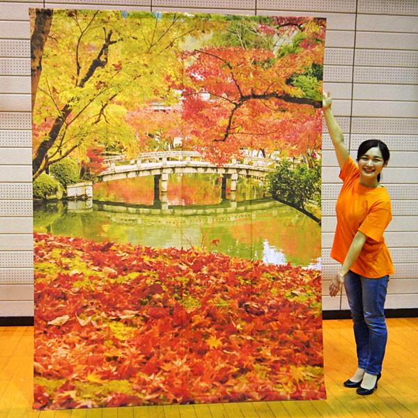 秋の装飾 バックスクリーンシート 紅葉風景 H240cm×W175cm [飾り もみじ]/動画有