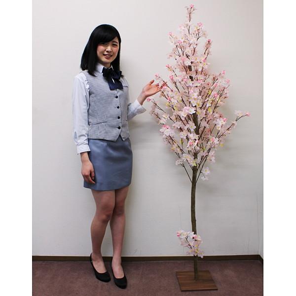 桜装飾 ナチュラル桜立ち木 H180cm / 飾り ディスプレイ 春
