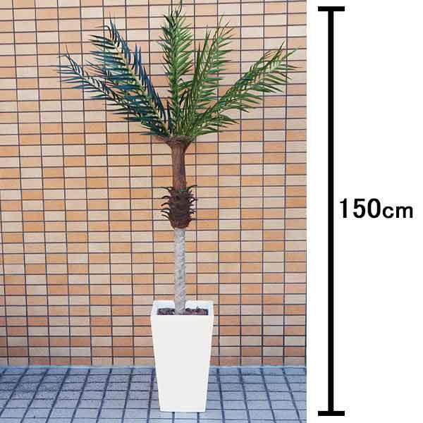 人工樹木 フェニックスパームツリー 150cm 白の鉢付き / 観葉植物 造花 ヤシの木 装飾 飾り ディスプレイ