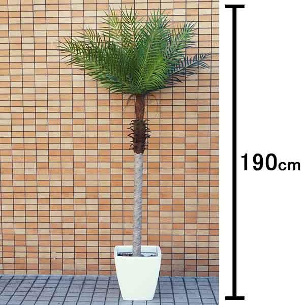 人工樹木 フェニックスパームツリー 190cm 白の鉢付き / 観葉植物 造花 ヤシの木 装飾 飾り ディスプレイ