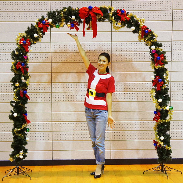 クリスマス装飾 エントランスアーチセット H236cm / ディスプレイ 飾り