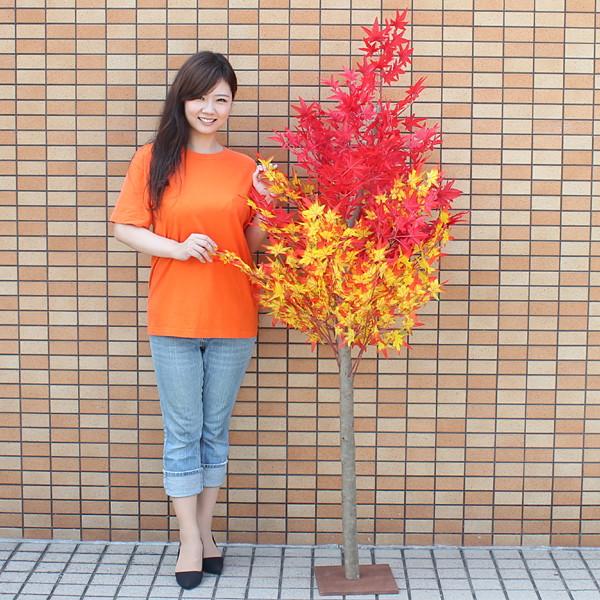 秋もみじ装飾 ナチュラル紅葉[もみじ]立木 180cm / 動画有