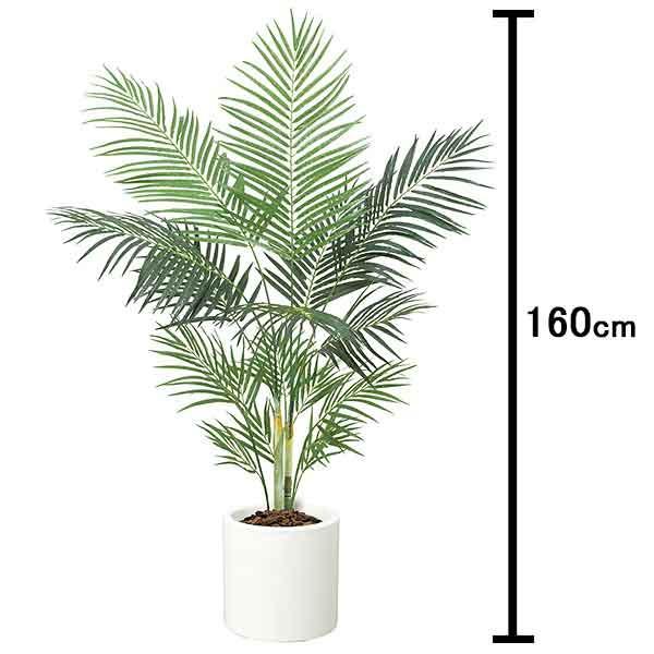 [送料無料] 人工樹木 アレカパームツリー 160cm 白い鉢付