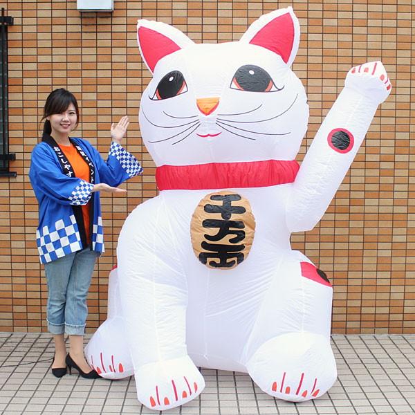 [送料無料] お正月装飾 ジャンボエアブロー 招き猫A 215cm/ 動画有