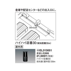 パナソニック ハイハイ店番30 投光器 (屋外型) 【EL313051】