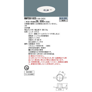 Panasonic パナソニック施設照明器具 NNFB91605 天井埋込型 LED(昼白色) 非常用照明器具 一般型(30分間) リモコン自己点検機能付/埋込穴φ100