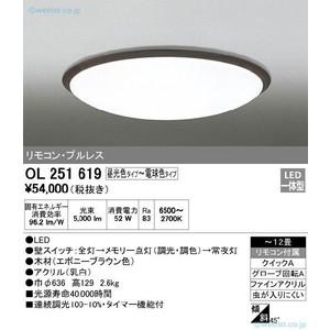 オーデリック OL251619