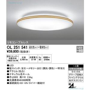 OL251541 オーデリックオーデリック OL251541, カクタスコガ:a42481b6 --- officewill.xsrv.jp