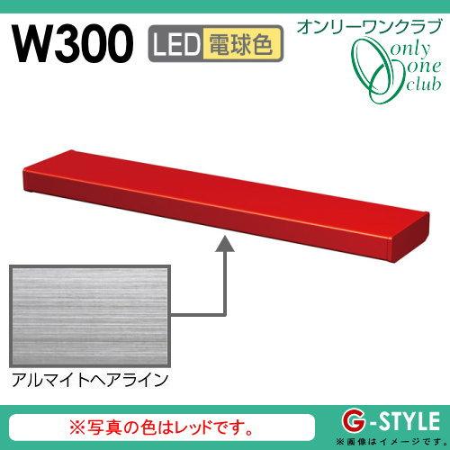 オンリーワンエクステリア 照明 ポーチライト 【シンライト プレーンタイプ W300 電球色 アルマイトヘアライン(AH)】 Thin Light