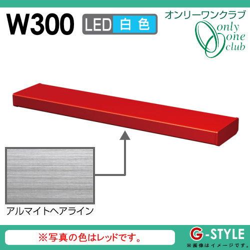 オンリーワンエクステリア 照明 ポーチライト 【シンライト プレーンタイプ W300 白色 アルマイトヘアライン(AH)】 Thin Light