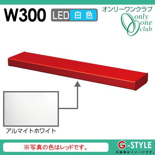 オンリーワンエクステリア 照明 ポーチライト 【シンライト プレーンタイプ W300 白色 アルマイトホワイト(AI)】 Thin Light